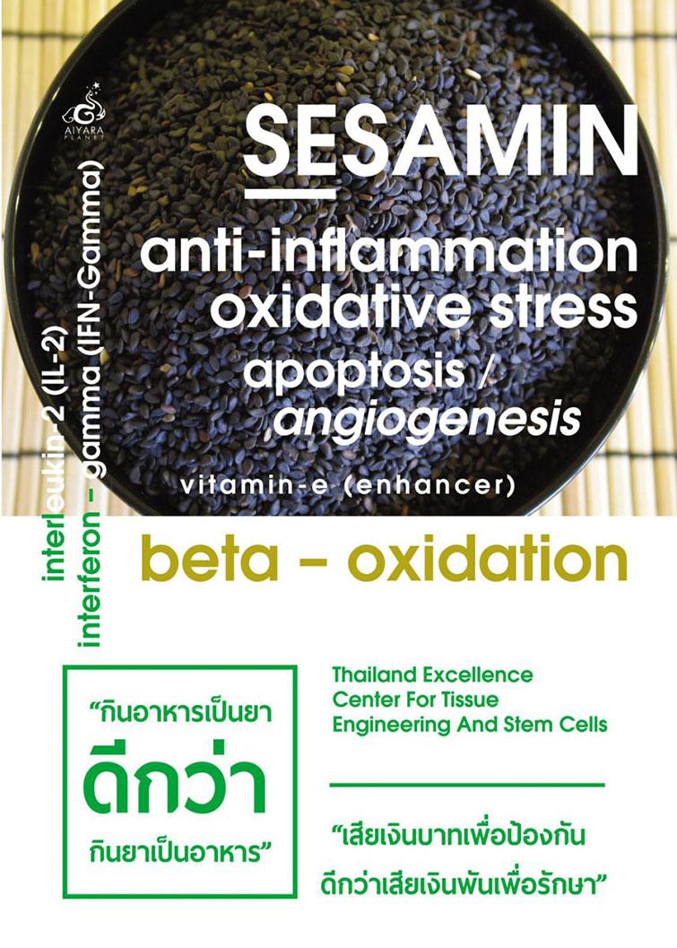 sesamin(755)
